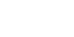 immagine del logo Boxer